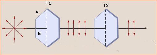 polarizacija 6
